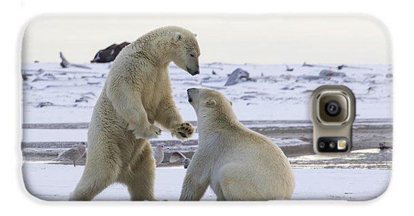 Polar Bear Play-fighting Galaxy S6 Case