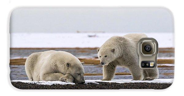 Polar Bear Zzzzzzz's Galaxy S6 Case