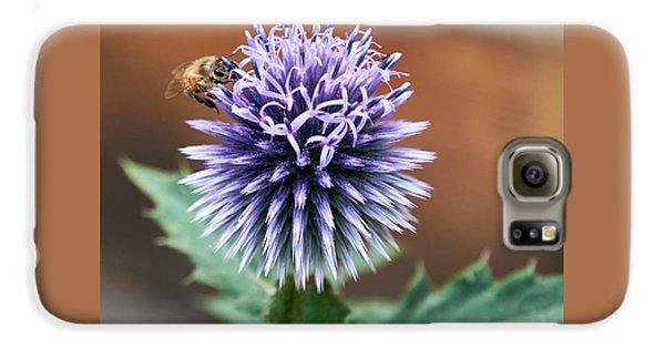 Pollen Rustler Galaxy S6 Case