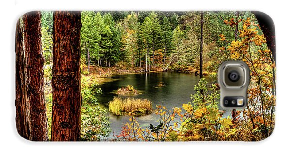 Pond At Golden Or. Galaxy S6 Case