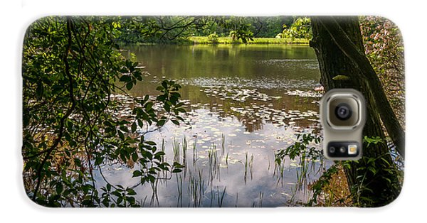 Pond In Spring Galaxy S6 Case