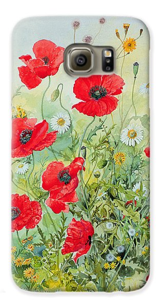 Garden Galaxy S6 Case - Poppies And Mayweed by John Gubbins