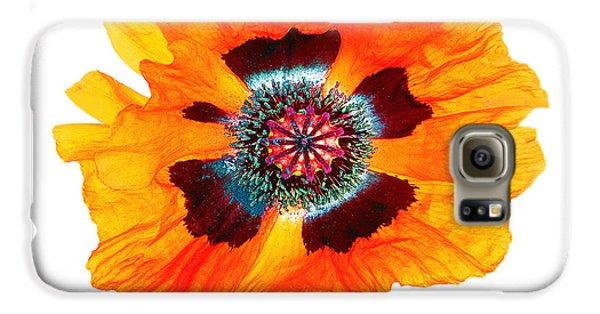 Poppy Pleasing Galaxy S6 Case