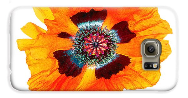 Poppy Pleasing Galaxy S6 Case