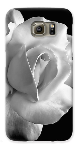 Great White Shark Galaxy S6 Case - Porcelain Rose Flower Black And White by Jennie Marie Schell