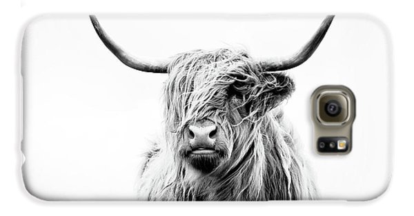 Cow Galaxy S6 Case - Portrait Of A Highland Cow by Dorit Fuhg