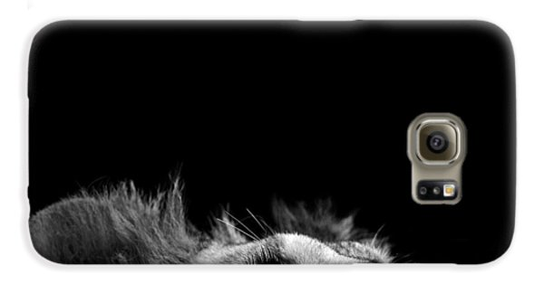 Lion Galaxy S6 Case - Portrait Of Lion In Black And White IIi by Lukas Holas