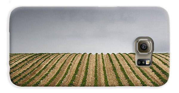 Potato Field Galaxy S6 Case by John Short