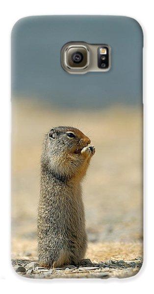 Prairie Dog Galaxy S6 Case