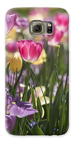 Pretty In Pink Tulips Galaxy S6 Case