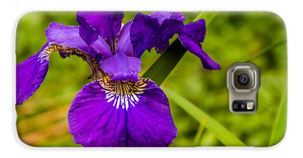 Purple Beauty Galaxy S6 Case