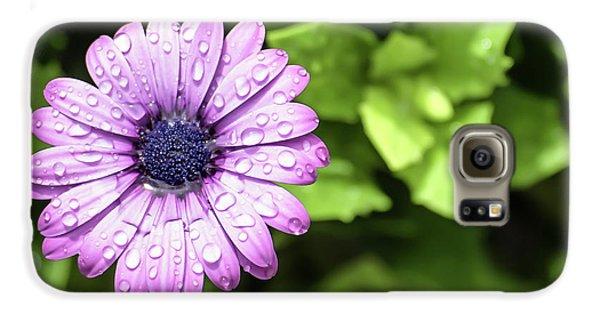 Purple Flower On Green Galaxy S6 Case