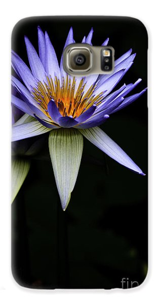 Purple Waterlily Galaxy S6 Case by Avalon Fine Art Photography