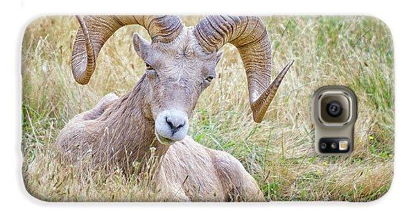 Ram In Field Galaxy S6 Case