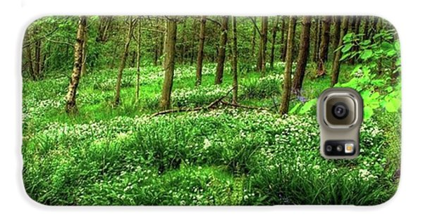 Ramsons And Bluebells, Bentley Woods Galaxy S6 Case