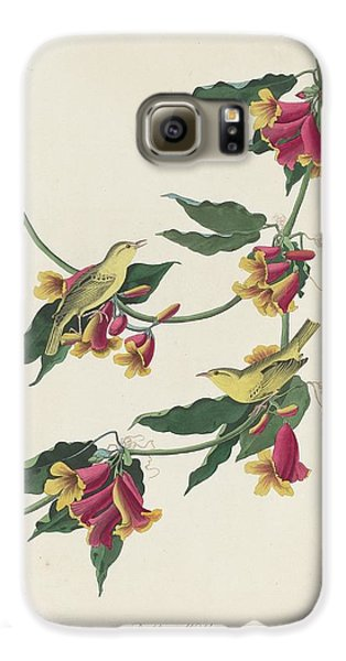 Rathbone Warbler Galaxy S6 Case by Rob Dreyer