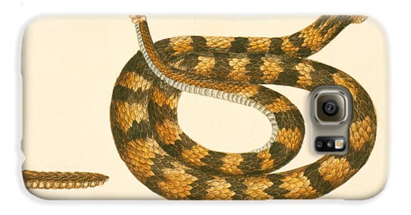 Rattlesnake Galaxy S6 Case by Mark Catesby