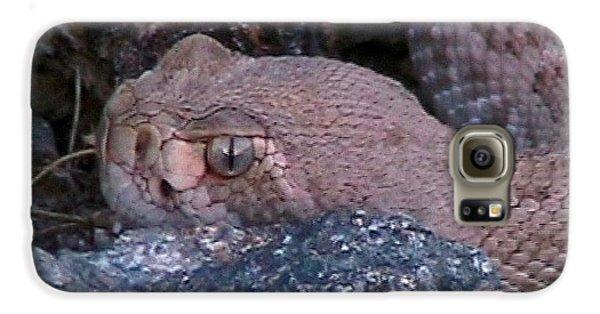 Rattlesnake Portrait Galaxy S6 Case