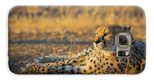 Reclining Cheetah Galaxy S6 Case