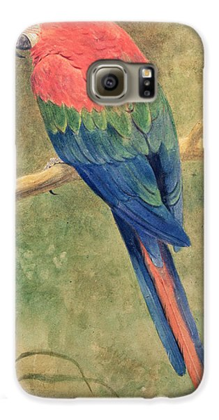 Macaw Galaxy S6 Case - Red And Blue Macaw by Henry Stacey Marks