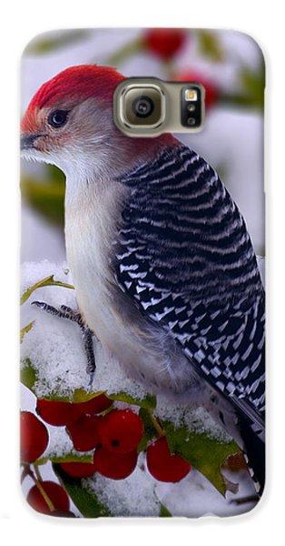 Red Bellied Woodpecker Galaxy S6 Case