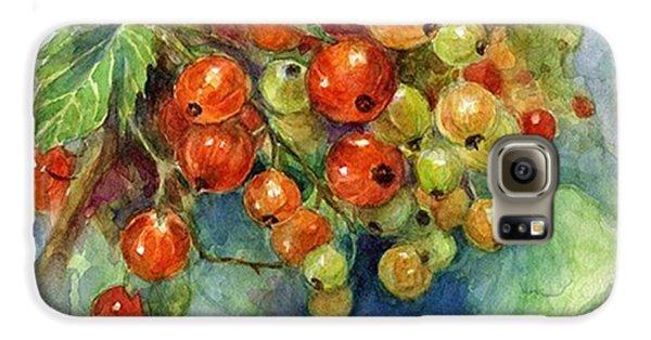 Follow Galaxy S6 Case - Red Currants Berries Watercolor by Svetlana Novikova