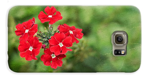 Red Flowers Galaxy S6 Case