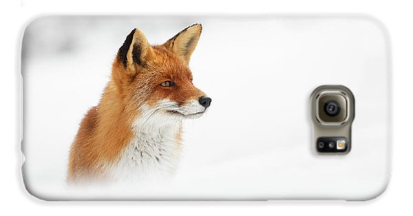 Fox Galaxy S6 Case - Red Fox Out Of The Blue by Roeselien Raimond