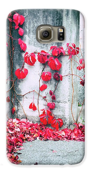Galaxy S6 Case featuring the photograph Red Ivy Leaves by Silvia Ganora