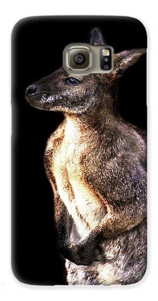 Kangaroo Galaxy S6 Case - Red Kangaroo by Martin Newman