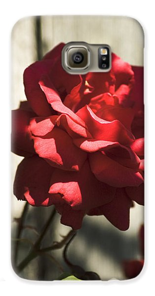Galaxy S6 Case featuring the photograph Red Rose by Yulia Kazansky