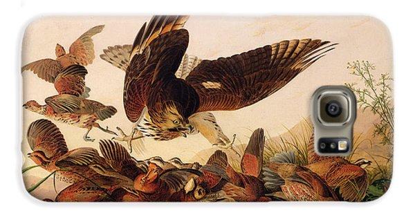 Red Shouldered Hawk Attacking Bobwhite Partridge Galaxy S6 Case by John James Audubon