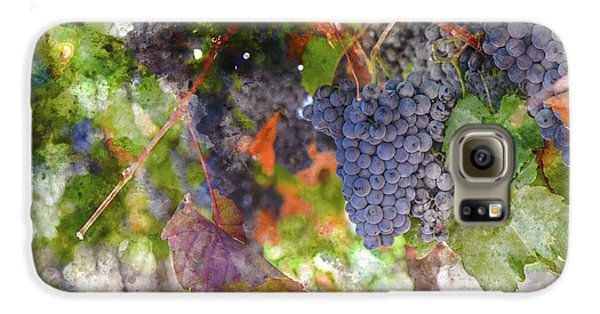 Red Wine Grapes On The Vine In Wine Country Galaxy S6 Case
