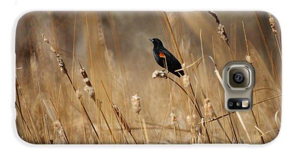 Red Winged Blackbird Galaxy S6 Case by Ernie Echols