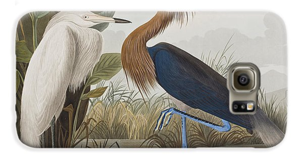 Reddish Egret Galaxy S6 Case by John James Audubon