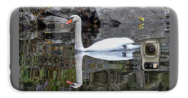Reflecting Mute Swan Galaxy S6 Case