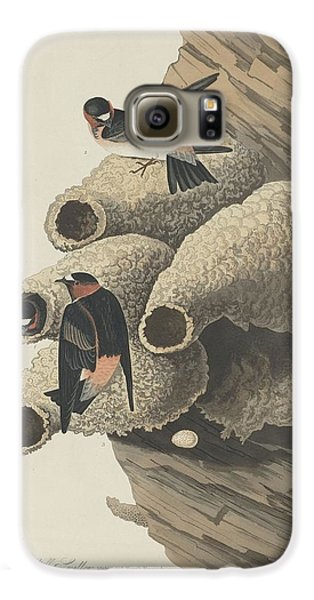 Republican Cliff Swallow Galaxy S6 Case