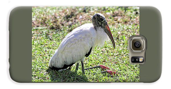 Resting Wood Stork Galaxy S6 Case