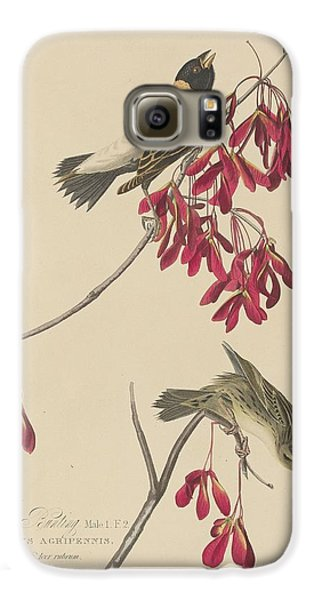 Rice Bunting Galaxy S6 Case by Dreyer Wildlife Print Collections