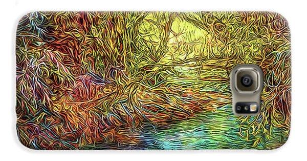 River Peace Remembering Galaxy S6 Case by Joel Bruce Wallach