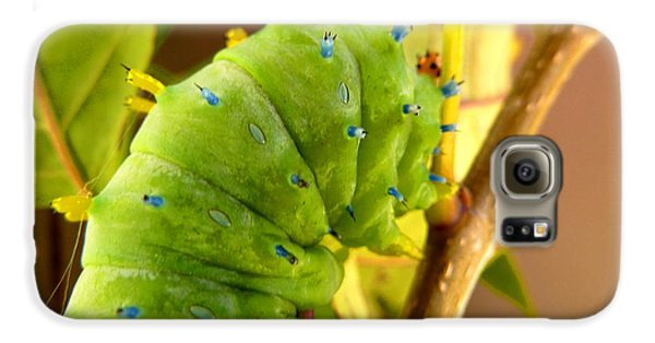Galaxy S6 Case featuring the photograph Robin Moth Caterpillar by Claire Bull