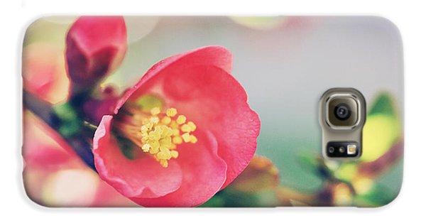 Romancing Spring II Galaxy S6 Case