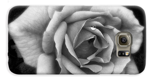 Summer Galaxy S6 Case - Rose In Mono. #flower #flowers by John Edwards