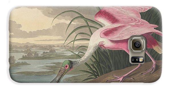 Roseate Spoonbill, 1836  Galaxy S6 Case