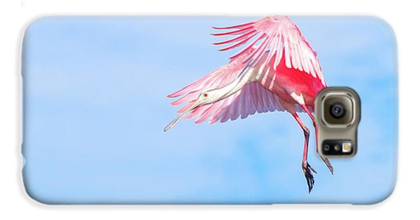 Roseate Spoonbill Final Approach Galaxy S6 Case by Mark Andrew Thomas
