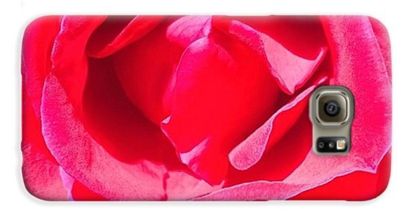 Blue Galaxy S6 Case - #roses Are #red ...#violets Are #blue by Shari Warren