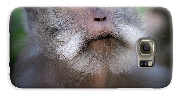 Helicopter Galaxy S6 Case - Sacred Monkey Forest Sanctuary by Larry Marshall