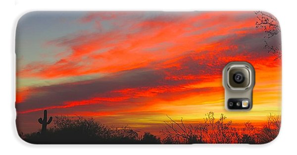 Saguaro Winter Sunrise Galaxy S6 Case