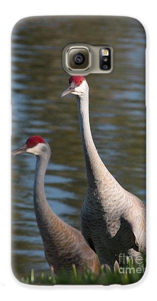 Sandhill Crane Couple By The Pond Galaxy S6 Case