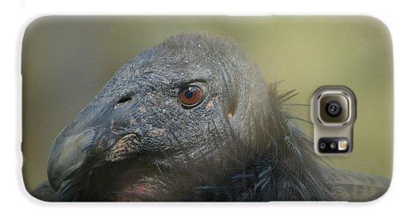 Scavenger Galaxy S6 Case by Fraida Gutovich